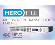 HERO FILE Файловый транскодер IP Multi-screen, RTSP, HLS, HDS, DASH, Flash