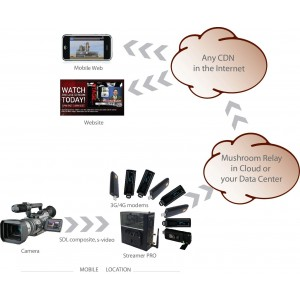 Трансляция видео с камеры StreamerPro