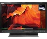 LMW-173-SV 17'' SD версия Много-форматный Автономный ЖК-монитор
