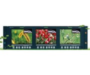 RMD5733-V 5.7''  3xLCDS Cтоечный профессиональный ЖК-монитор CVBS версия